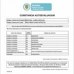 Auto-evaluación 2014